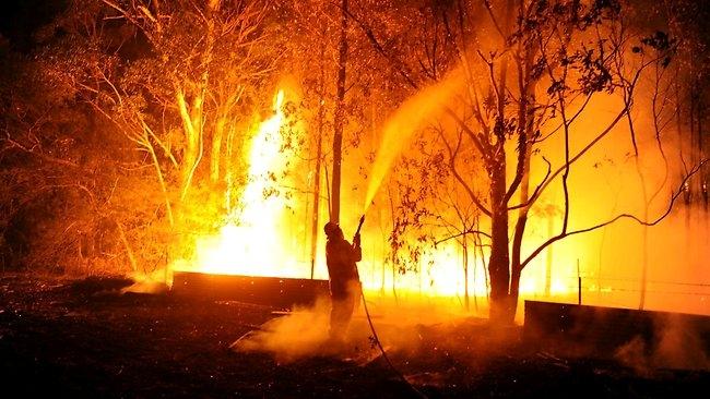 Bild från http://www.news.com.au Picture: Dan Himbrechts
