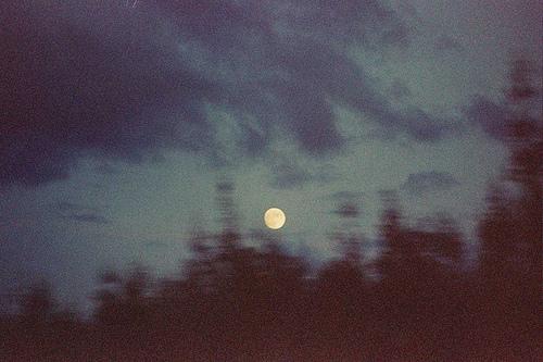 Bild från http://weheartit.com/entry/45562652