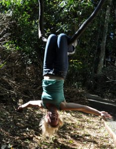 Upp och ner i regnskogen!