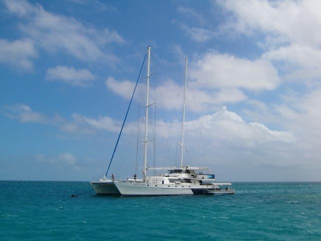 Bild från 2011 - Cairns och Stora Barriärrevet