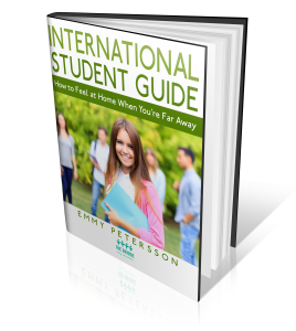 international student 3d